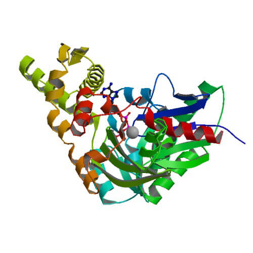 Crystal structure of the ATPase domain in human Grp78/BiP (HspA5) complexed to ATP